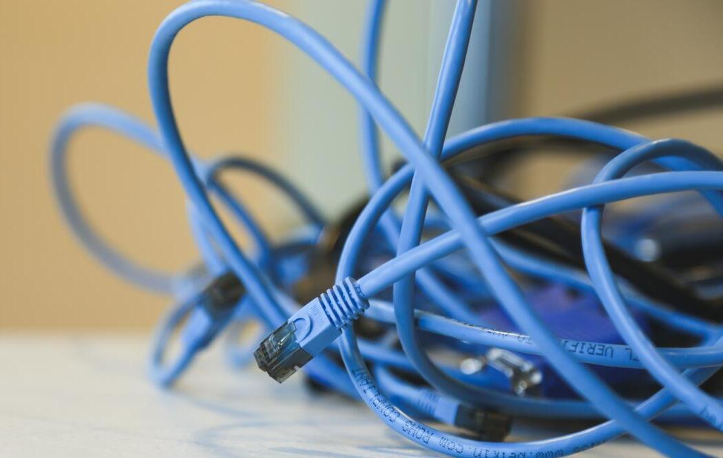Network cable photo